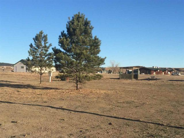 750 Marie St, Hermosa, SD 57744 (MLS #60417) :: Christians Team Real Estate, Inc.
