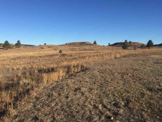 795 Marie St, Hermosa, SD 57744 (MLS #60425) :: Dupont Real Estate Inc.