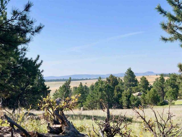 26675 Stage Stop Road, Custer, SD 57730 (MLS #60439) :: Christians Team Real Estate, Inc.