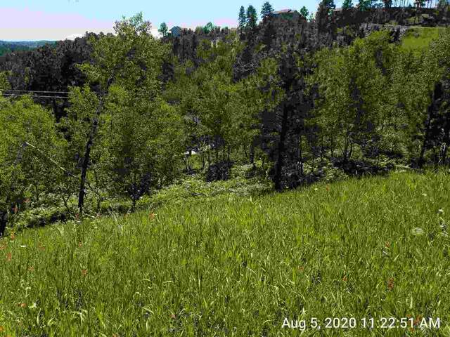 Lot 3 Mountain View, Lead, SD 57754 (MLS #60552) :: Dupont Real Estate Inc.
