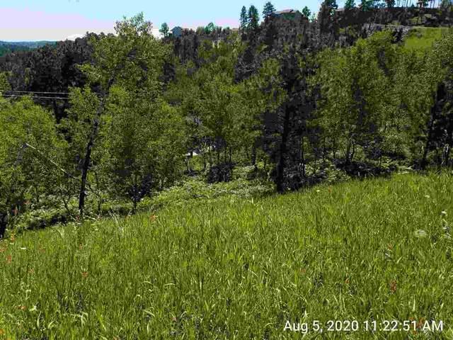 Lot 3 Mountain View, Lead, SD 57754 (MLS #60552) :: VIP Properties