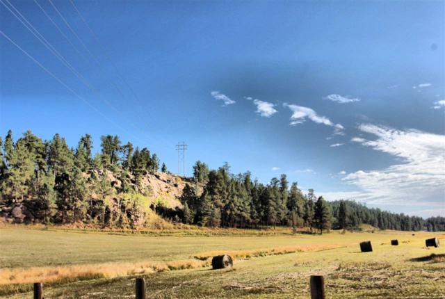 TBD Lot 5 & 6 Sidney Park Road, Custer, SD 57730 (MLS #60579) :: Christians Team Real Estate, Inc.