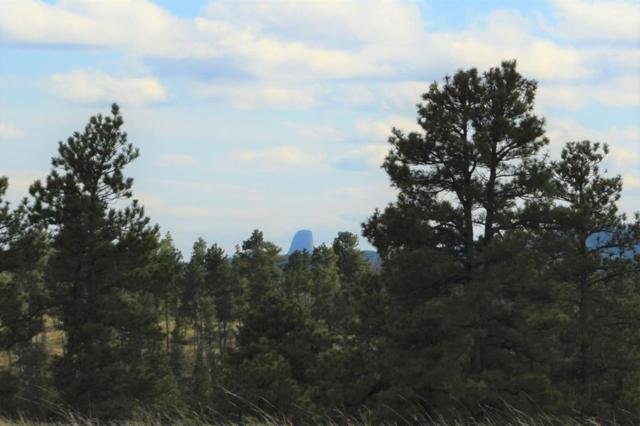 tbd Deer Creek Rd, Hulett, Wyoming 82720, Hulett, WY 82720 (MLS #60723) :: Dupont Real Estate Inc.