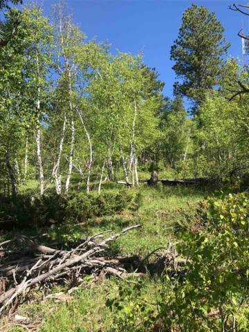 LOT 5 Aventure Loop, Lead, SD 57754 (MLS #61029) :: Christians Team Real Estate, Inc.
