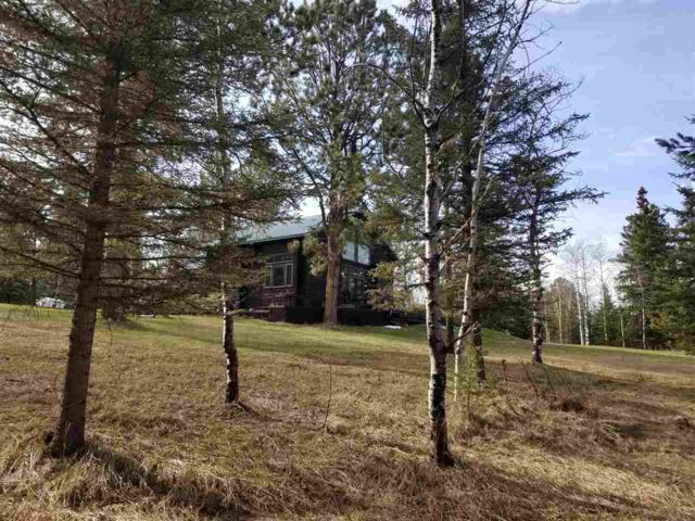 22308 N Rochford Road, Lead, SD 57754 (MLS #61172) :: Dupont Real Estate Inc.