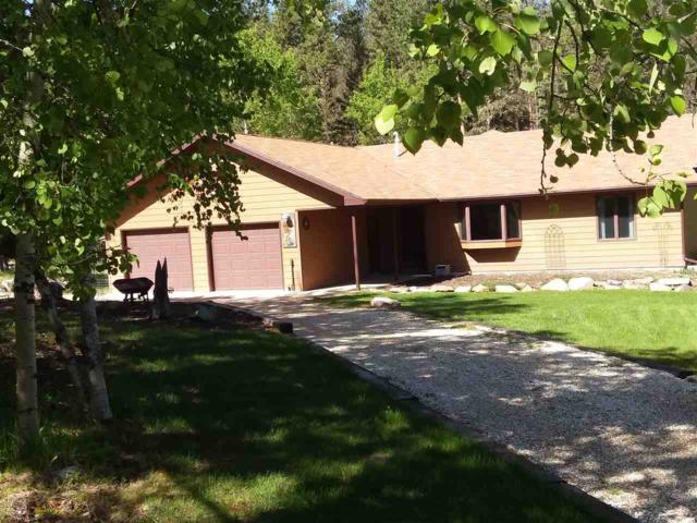 21367 White Tail Drive, Lead, SD 57754 (MLS #61202) :: Christians Team Real Estate, Inc.