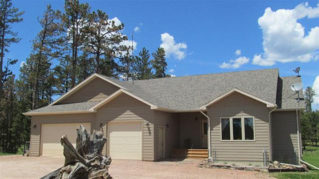 24006 Iron Horse Ct., Hill City, SD 57745 (MLS #61210) :: Christians Team Real Estate, Inc.
