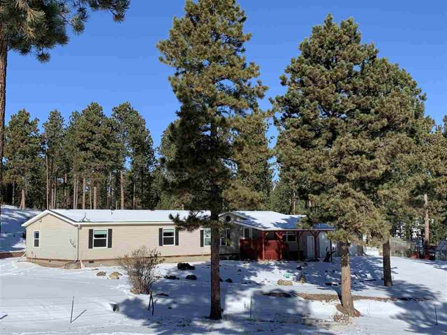 23607 Tigerville Rd., Hill City, SD 57745 (MLS #61231) :: Christians Team Real Estate, Inc.