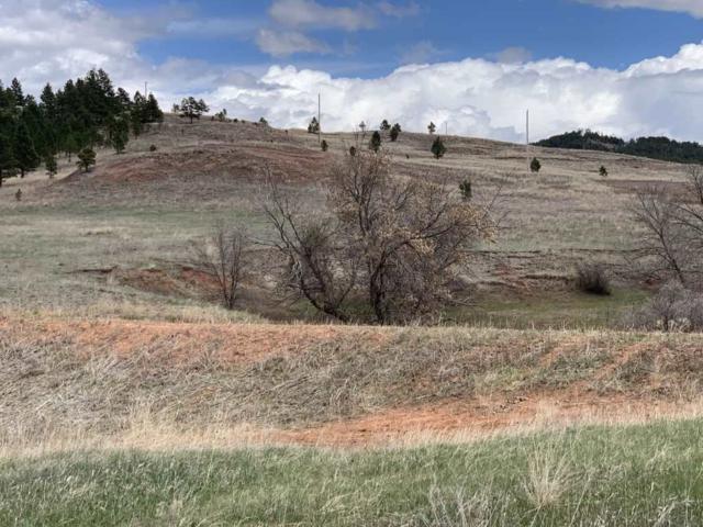 Lot 2 Red Dirt Road, Hot Springs, SD 57747 (MLS #61276) :: Christians Team Real Estate, Inc.