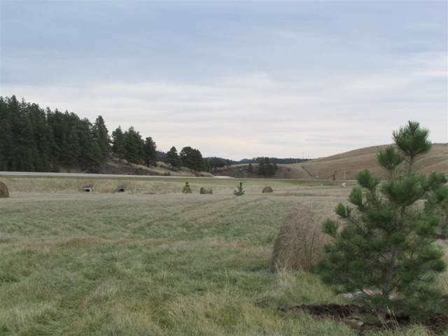 TBD Deerfield Road, Hill City, SD 57745 (MLS #61277) :: Dupont Real Estate Inc.