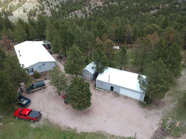 130 Kara Circle, Sundance, WY 82729 (MLS #61303) :: Christians Team Real Estate, Inc.