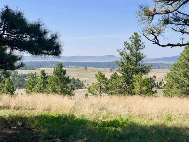 Pronghorn 4 Address Not Published, Custer, SD 57730 (MLS #61310) :: Christians Team Real Estate, Inc.