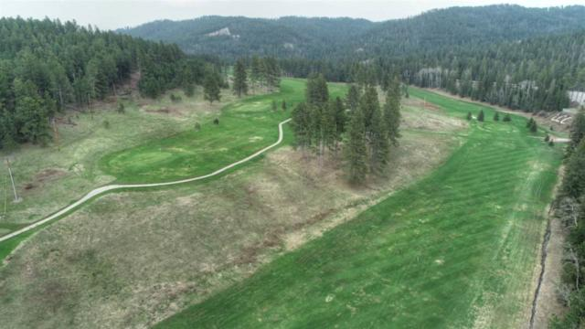Lot 16 Ironwood Estates, Lead, SD 57754 (MLS #61321) :: Dupont Real Estate Inc.