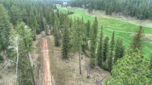 Lot 15 Ironwood Estates, Lead, SD 57754 (MLS #61322) :: Dupont Real Estate Inc.