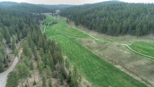 Lot 14 Ironwood Estates, Lead, SD 57754 (MLS #61323) :: Dupont Real Estate Inc.