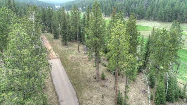 Lot 5 Ironwood Estates, Lead, SD 57754 (MLS #61327) :: Dupont Real Estate Inc.