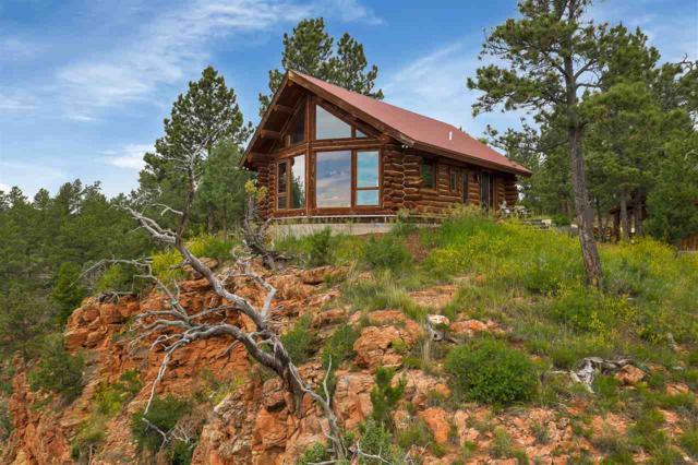 11598 Farmer Road, Custer, SD 57730 (MLS #61332) :: Christians Team Real Estate, Inc.