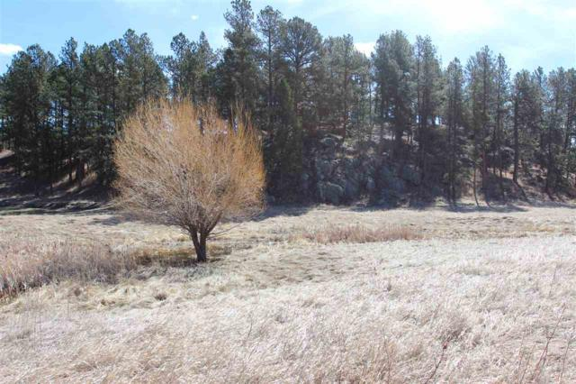 Lot 8 Golden Willow Parkway, Custer, SD 57730 (MLS #61425) :: Christians Team Real Estate, Inc.