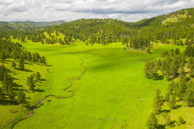 TBD Middle Nugget Gulch, Silver City, SD 57702 (MLS #61471) :: Christians Team Real Estate, Inc.
