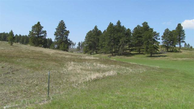 TBD Pyrite Court, Hill City, SD 57745 (MLS #61560) :: Christians Team Real Estate, Inc.