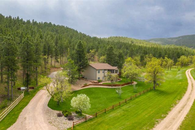 13053 Big Elk Drive, Piedmont, SD 57769 (MLS #61589) :: Christians Team Real Estate, Inc.