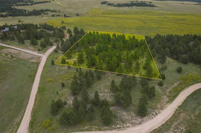 Vista Meadows 5 Elk Run Road, Custer, SD 57730 (MLS #61796) :: VIP Properties