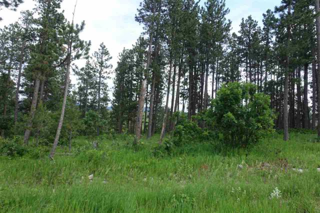 TBD Aster Road, Spearfish, SD 57783 (MLS #61883) :: Christians Team Real Estate, Inc.