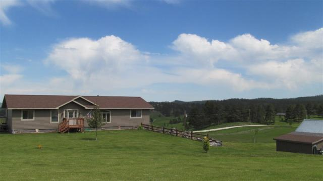23473 Mineral Lane, Hill City, SD 57745 (MLS #61912) :: Christians Team Real Estate, Inc.