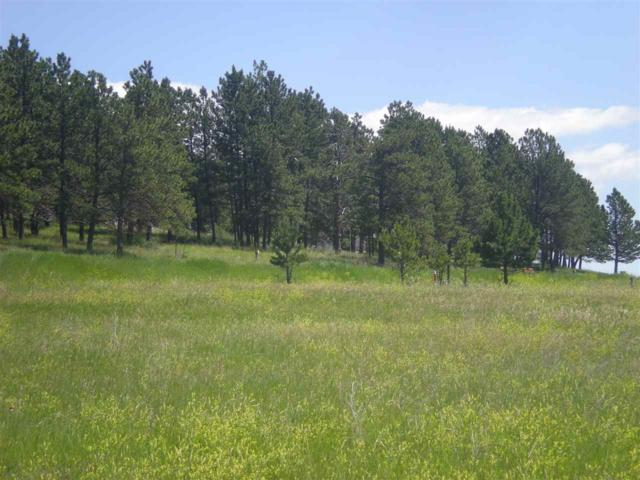 26802 Lowell Drive, Hot Springs, SD 57730 (MLS #62015) :: Dupont Real Estate Inc.