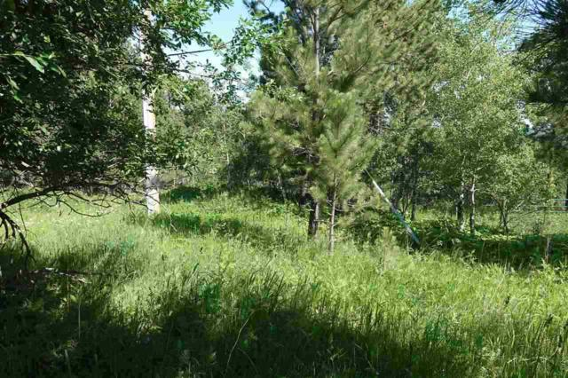 TBD Mountain View Drive, Lead, SD 57732 (MLS #62075) :: Christians Team Real Estate, Inc.