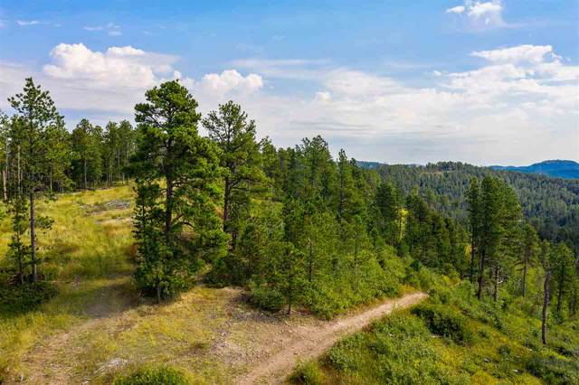 MS 1376 Sampson #2 Lode, Spearfish, SD 57783 (MLS #62559) :: Christians Team Real Estate, Inc.