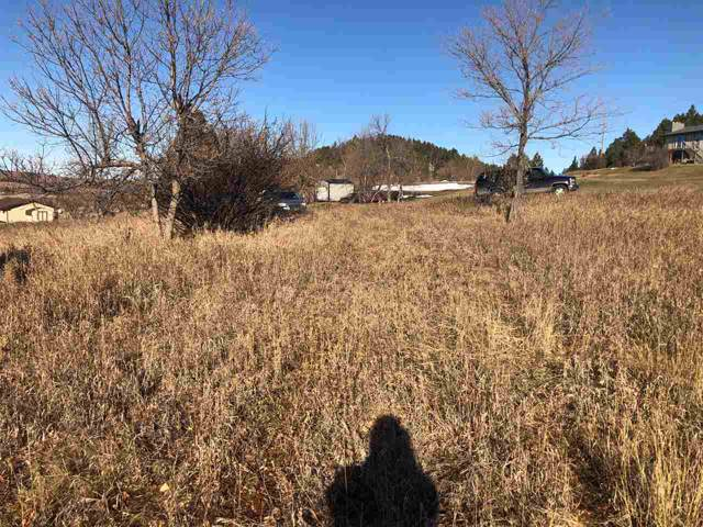TBD Blucksberg Mtn Rd, Sturgis, SD 57785 (MLS #63035) :: Dupont Real Estate Inc.