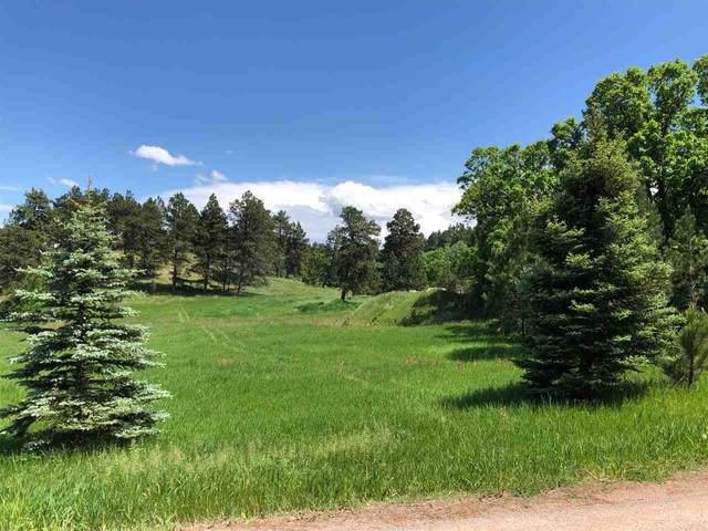 TBD Oak, Whitewood, SD 57793 (MLS #63227) :: Dupont Real Estate Inc.