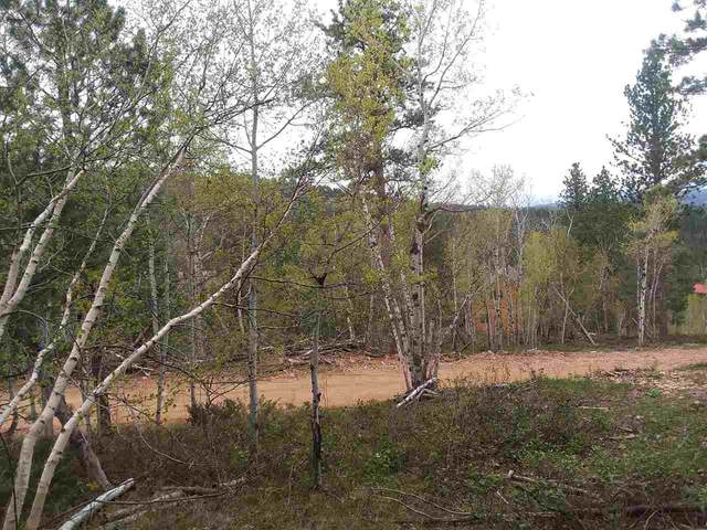 Lot 7 Address Not Published Trail, Lead, SD 57754 (MLS #63314) :: Christians Team Real Estate, Inc.