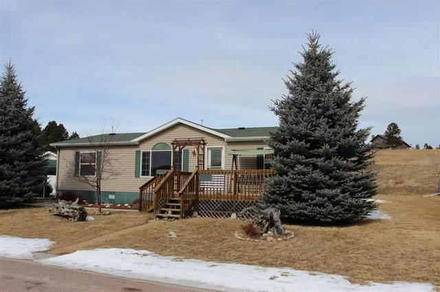 1729 Wild Rose Lane, Custer, SD 57730 (MLS #63598) :: VIP Properties