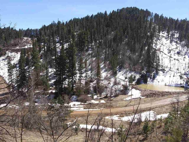 11269 Terry Gulch Road, Lead, SD 57754 (MLS #63731) :: Dupont Real Estate Inc.