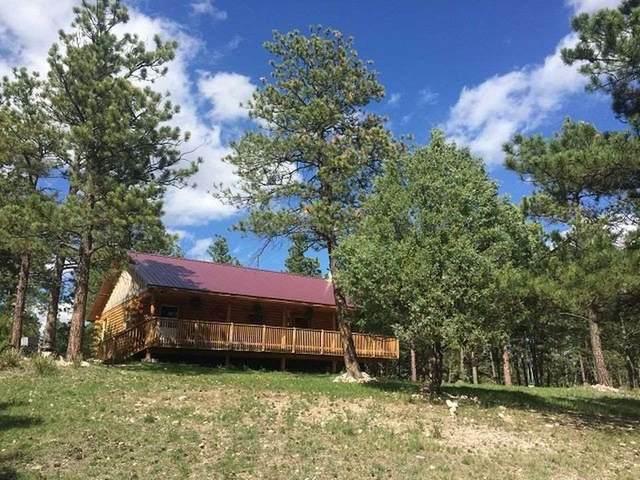 26949 Walking Bull, Hot Springs, SD 57747 (MLS #63818) :: VIP Properties