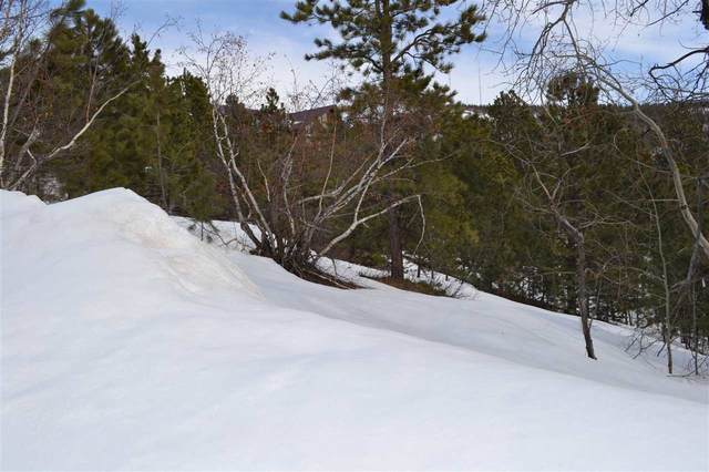 Tract D Lost Camp Valley, Lead, SD 57754 (MLS #63973) :: VIP Properties
