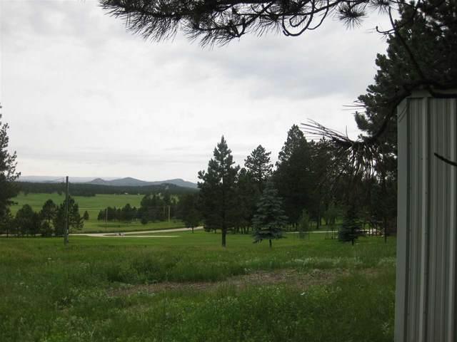 7 Westview Road, Custer, SD 57730 (MLS #64117) :: VIP Properties