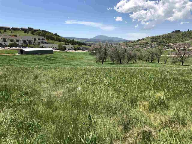 422 Buttercup Court, Spearfish, SD 57783 (MLS #64218) :: Daneen Jacquot Kulmala & Steve Kulmala