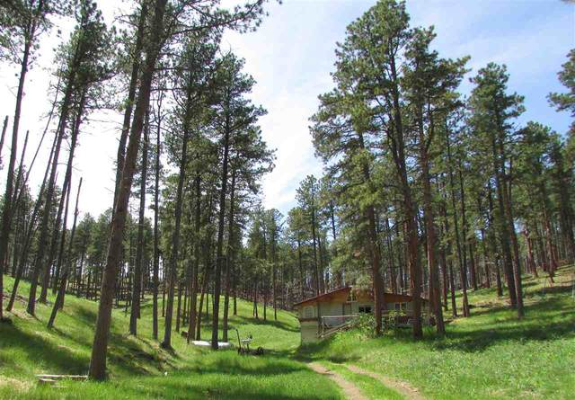 23225 Highway 385, Rapid City, SD 57702 (MLS #64632) :: Dupont Real Estate Inc.