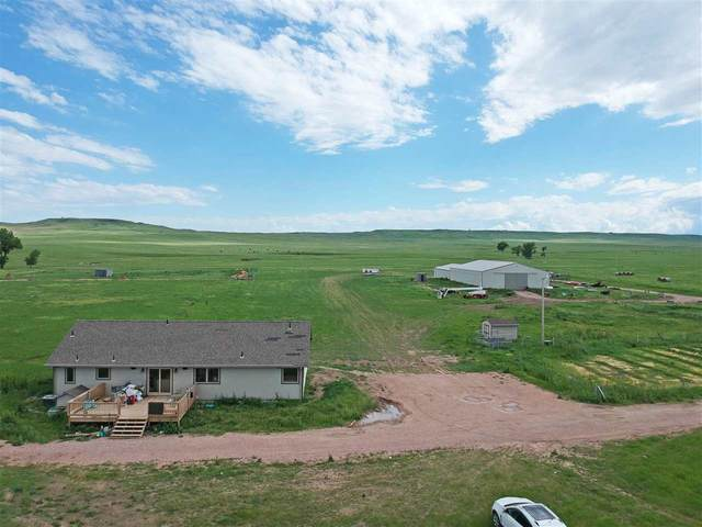 14856 Dakota View Drive, Piedmont, SD 57769 (MLS #64951) :: Christians Team Real Estate, Inc.