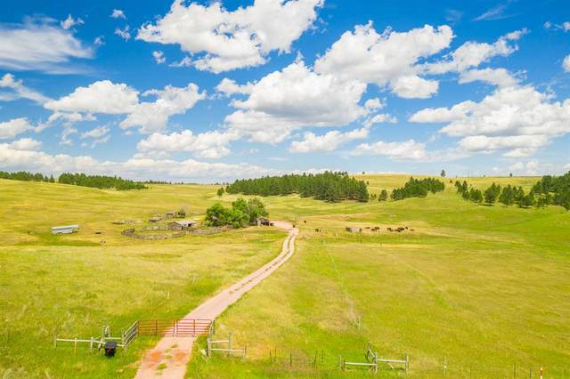 26690 Highway 89, Custer, SD 57730 (MLS #65263) :: VIP Properties