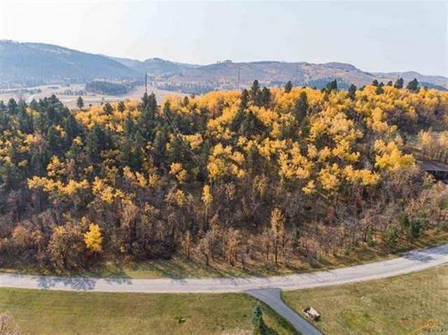 TDB Ranch Road, Deadwood, SD 57732 (MLS #65698) :: Christians Team Real Estate, Inc.