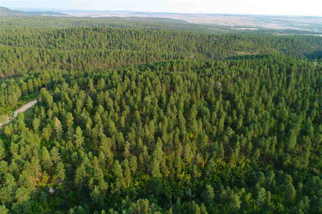 Lots 49 & 50 Aster Road, Spearfish, SD 57783 (MLS #65759) :: Dupont Real Estate Inc.
