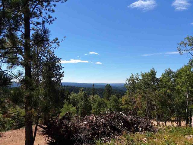 Lot 7 Address Not Published, Lead, SD 57754 (MLS #65786) :: Christians Team Real Estate, Inc.