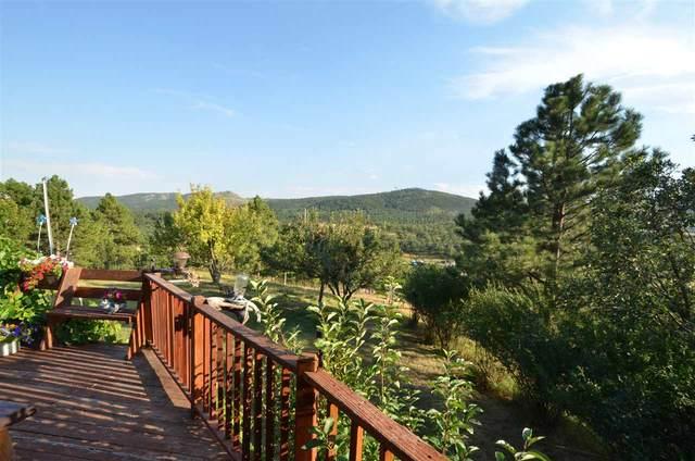 11846 Mountain Meadow Drive, Sturgis, SD 57732 (MLS #65807) :: Christians Team Real Estate, Inc.