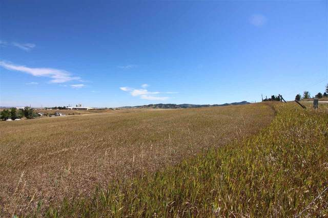 TBD Mcguigan Road, Spearfish, SD 57783 (MLS #65809) :: Dupont Real Estate Inc.