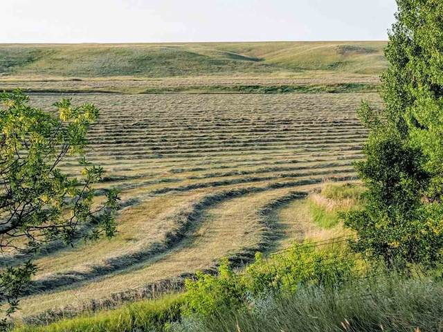 10704 Hay Creek Road, Belle Fourche, SD 57717 (MLS #66097) :: Christians Team Real Estate, Inc.
