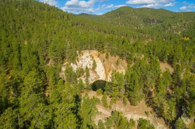 Dan Patch Mine Lafferty Gulch, Keystone, SD 57751 (MLS #66153) :: Black Hills SD Realty